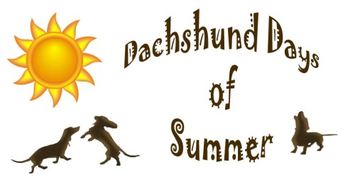 Dachshund Days of Summer logo